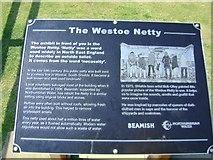 NZ3666 : Westoe Netty Plaque by Terry