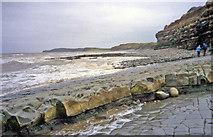 ST1444 : Wave cut platform at Kilve Beach by Trevor Rickard