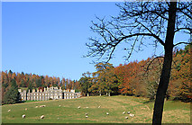 NT4227 : Bowhill House by Walter Baxter