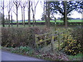 TM3686 : Footpath to the A144 Stone Street by Adrian Cable