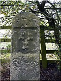 NZ1465 : River Tyne Tide Stone by Andrew Curtis