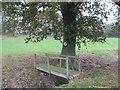 SJ6267 : Foot bridge and oak tree at Marton Sands by Dr Duncan Pepper