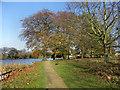 SJ9284 : Poynton Park and Lake by David Dixon