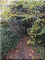 SX9391 : Old gateway into the garden of Gras Lawn by David Smith