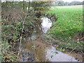 SJ6264 : The Poolstead Brook looking downstream by Dr Duncan Pepper
