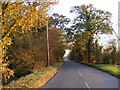 TM2471 : B1118 Brundish Road, Wilby by Adrian Cable