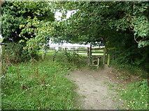 SU6017 : South Downs Society Green Travel Walks Week (200) by Basher Eyre