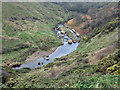 TA0391 : Scalby Beck from The Cleveland Way by Pauline E