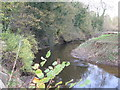 SJ6661 : The River Weaver adjacent to Sandicroft Wood by Dr Duncan Pepper