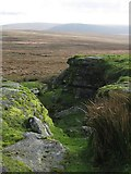 SX5686 : Green Tor by Chris Andrews