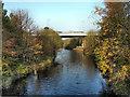 SJ9395 : River Tame by David Dixon
