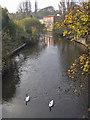 SE7871 : River Derwent from Railway Street bridge by Pauline E