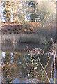 SE7070 : Lake near Atkinson's Bog by Pauline E