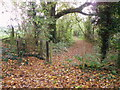 SU1015 : Kissing gate and footpath, Damerham by Maigheach-gheal