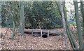 TQ4192 : Footbridge over dry stream in Knighton Wood by Roger Jones