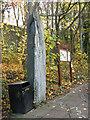 NT2270 : Millennium Monolith by Anne Burgess