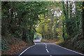TQ1460 : Steel's Lane, Oxshott by Robin Webster