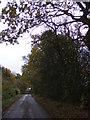 TM1773 : The Street, Denham Street by Adrian Cable