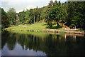 ST2428 : West Monkton: upper lake, Hestercombe by Martin Bodman