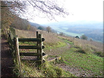 TQ1350 : North Downs Way, Ranmore Common by Colin Smith