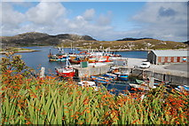 NF8855 : Kallin Harbour by Robert W Watt