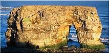 NZ4064 : Marsden Rock - Stack and Arch by Robert W Watt