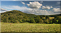 NY5045 : Coombe Clints by Peter McDermott