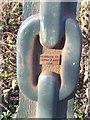 SK0305 : Detail on a Millennium Milepost by John M