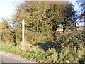 TM2177 : Footpath to Weybread & Vicarage Roads by Adrian Cable