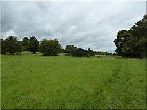 SU6017 : South Downs Society Green Travel Walks Week (211) by Basher Eyre