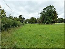 SU6017 : South Downs Society Green Travel Walks Week (214) by Basher Eyre