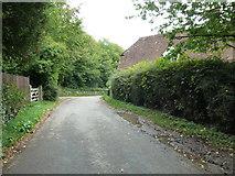 SU6017 : South Downs Society Green Travel Walks Week (227) by Basher Eyre