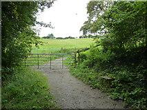 SU6017 : South Downs Society Green Travel Walks Week (233) by Basher Eyre