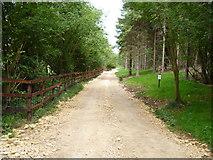 SP0626 : Four woodland ways 2011 [1] by Michael Dibb