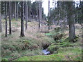 NY6292 : Unnamed Sike or Burn, Kielder Forest by Les Hull