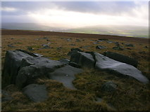 SE0030 : Gritstone boulders by Limers' Gate by John H Darch
