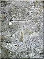 NN9941 : Bench Mark, Lagganallachie by Maigheach-gheal