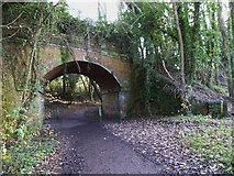 SU4726 : Path under disused railway bridge by Shazz