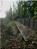 SU4726 : Disused railway north of Hockley viaduct (3) by Shazz