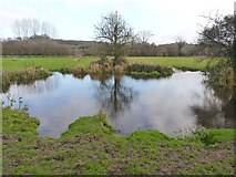 SU4726 : River Itchen Water Meadows by Mike Smith