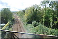 TQ9220 : Marshlink Line by N Chadwick
