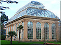 NT2475 : The Temperate Palm House by John Allan