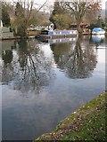 SU7682 : Town Rod Eyot, Henley-on-Thames by Adrian Platt