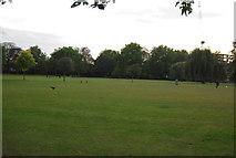 TQ3165 : Wandle Park by N Chadwick