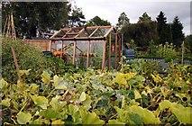 SJ7243 : The vegetable garden by Steve Daniels
