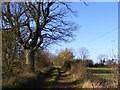 TM2768 : Kings Lane Bridleway & entrance to Downs Farm Bungalow by Adrian Cable