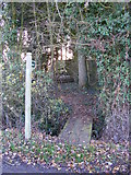 TM2976 : Footpath to Tongs Lane by Adrian Cable