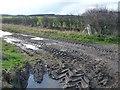 TA0272 : Muddy field entrance by Christine Johnstone