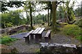 R6875 : Ballycuggaran Forest Recreation Area - picnic table, near Killaloe, Co. Clare by P L Chadwick