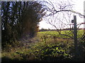 TM2775 : Footpath to Deadmans Grave Lane by Adrian Cable